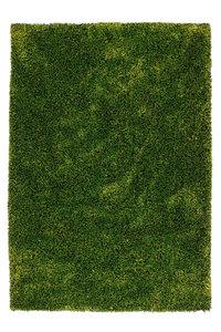 Groen hoogpolig tapijt Axel Groen